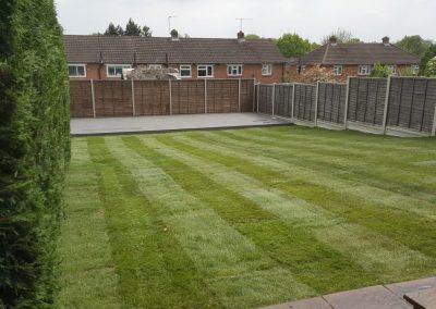 C&A Grass